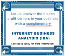 WSI complimentary internet business analysis